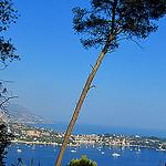 """""""Villefranche-sur-mer harbour"""""""