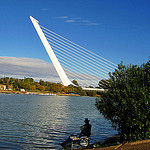 """Alamillo Bridge in Seville"""