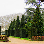 """typical of french gardens this one in bourges"""