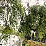 thumb london parks
