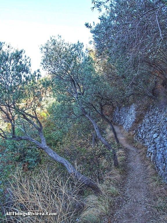 """""""route to San Lanzaro on a Wondrous Easy Hike in Noli Italy"""""""