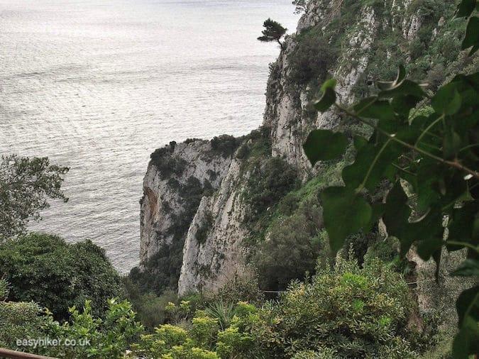 """see the best of Capri"""