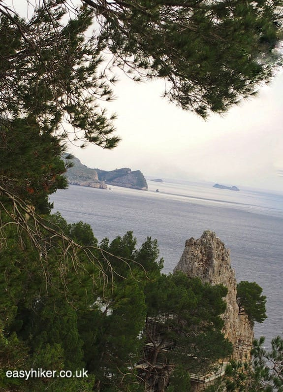 """""""on an easy hike to see the best of Capri"""""""