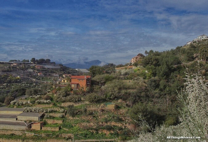 """a first look before Hiking the Steep Bordighera Hills"""