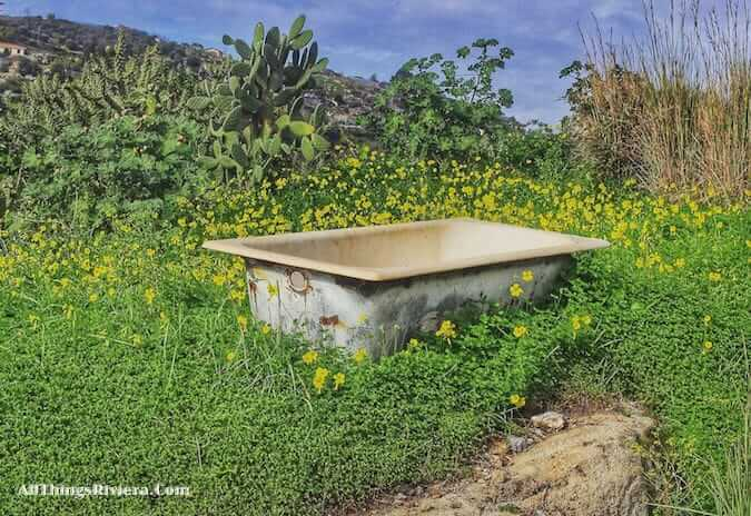 """old discarded bathtub seen while Hiking the Steep Bordighera Hills"""