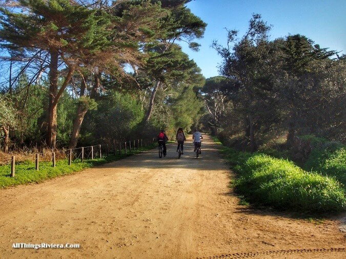 """bike trails when hiking or biking in Porquerolles"""