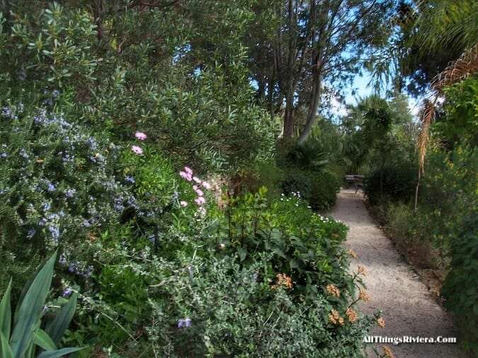 """"""" in Hyères an Idyllic Garden"""""""