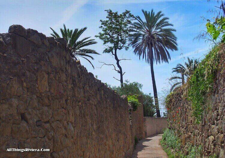 """the trail along the palm trees of Bordighera"""