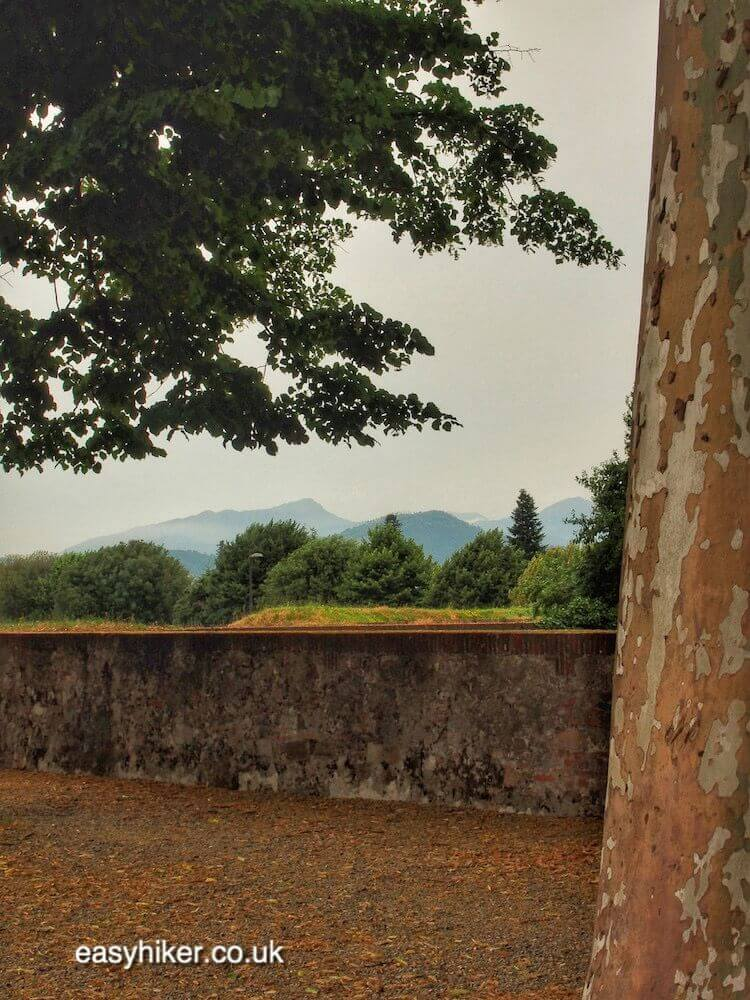 """views of countryside on a Walk Along the Lucca Wall"""