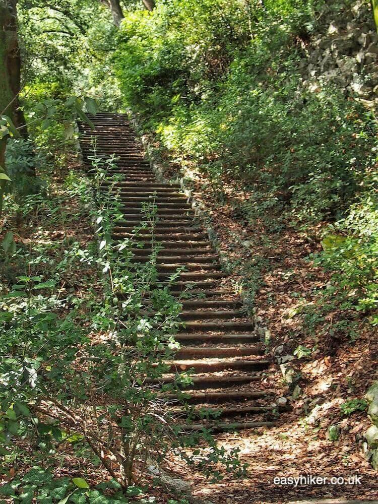 """""""secret stairway in the eclectic Miramare Gardens"""""""
