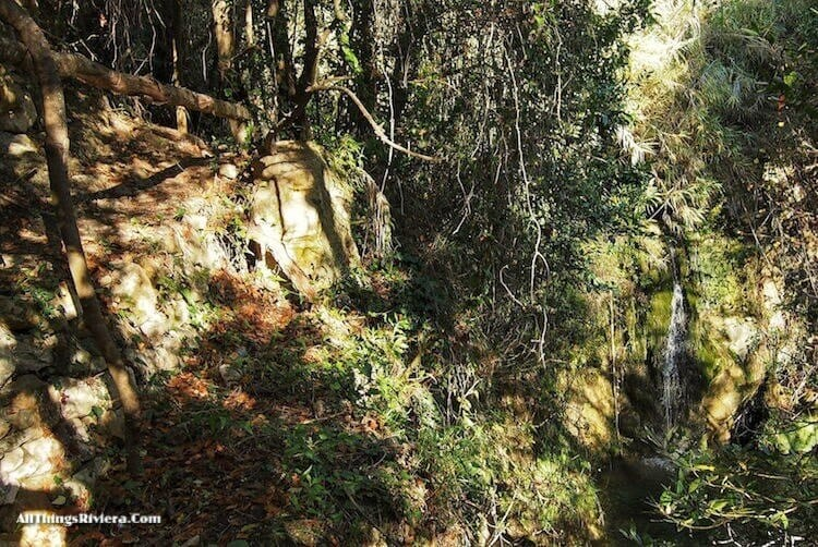 """""""small waterfall on a Fascinating Hike in Sasso"""""""